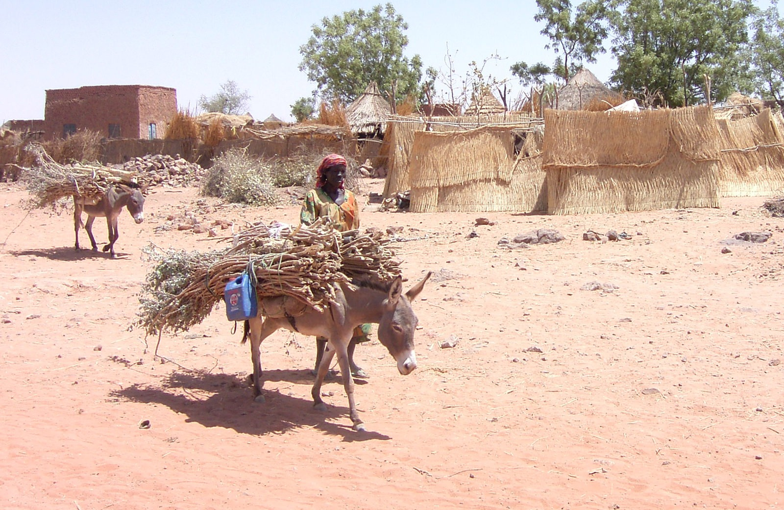 A Sudanese man fetching water in a country struggling with drought and desertification